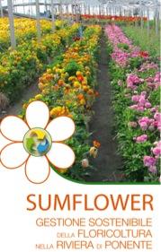cover-sumflower